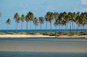 costa-dos-coqueiros